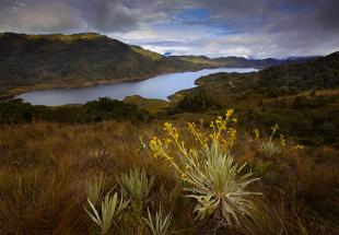 parc-national-chingaza-colombie2011-1.jpg